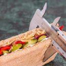 Diet Vernier Sandwich Calorie Counter Weight Loss